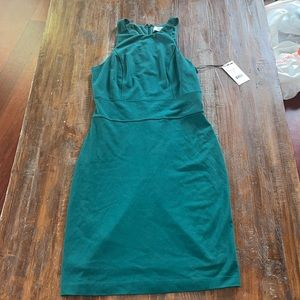 brand new lili and jay green fitted dress